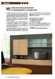 oece-professione-verniciatore-del-legno-157